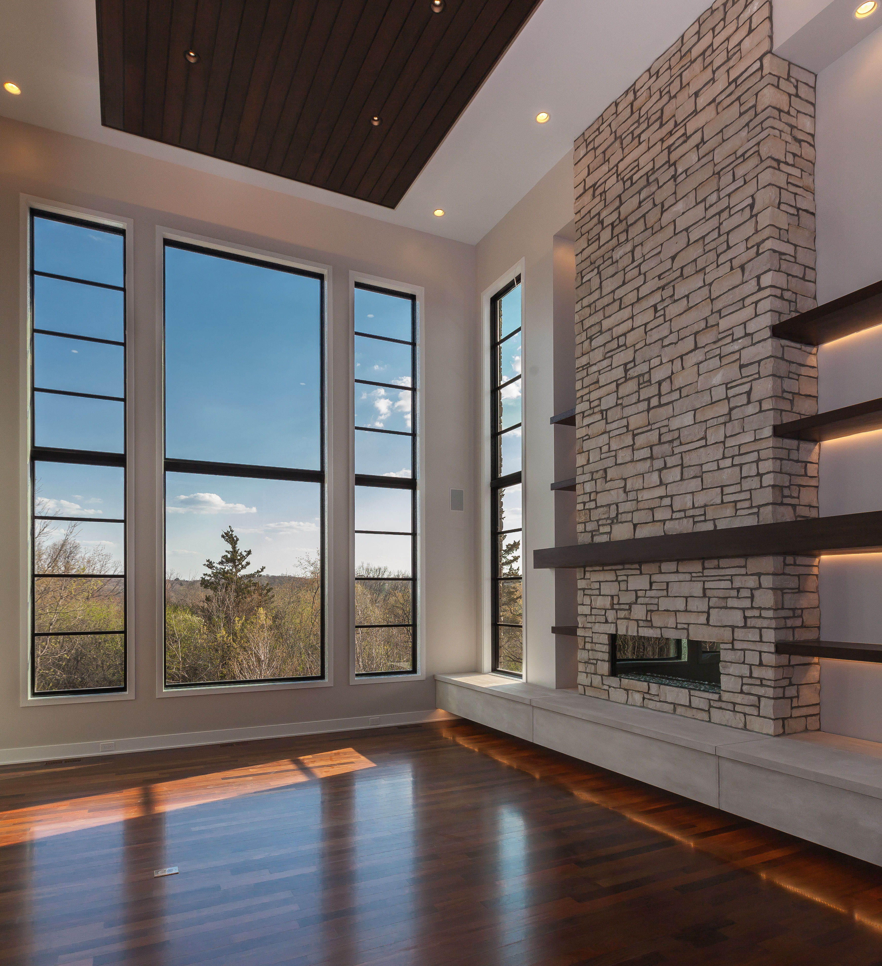Contemporary Home Great Room